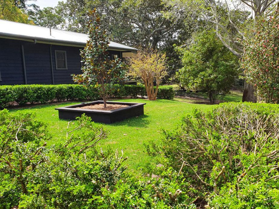 Garden and lawn with newly installed planter box with tree on lawn